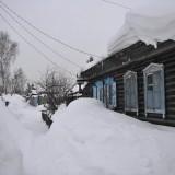 Novosibirsk, asediat de troiene, insa nimeni nu se plange                 Foto: Florentin Tufa